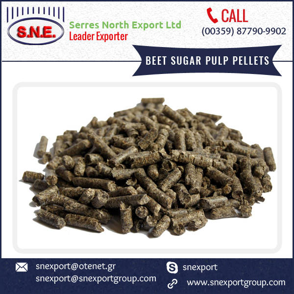 Beet Sugar Pulp Pellets Valuable And Highly Marketable Animal Feed Product