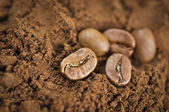 Quality Grounded Arabica Coffee