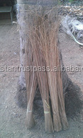 coconut or palm leaf broom sticks raw material