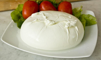 Cheese - Mozzarella & Cheddar - Contact Us for Free Samples