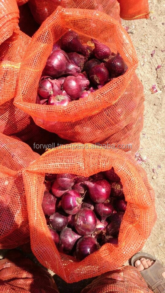 Onion different size 100%natural
