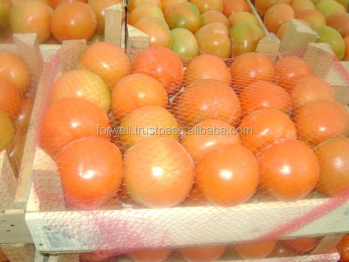 cheap fresh tomatoes lowest price in market fresh