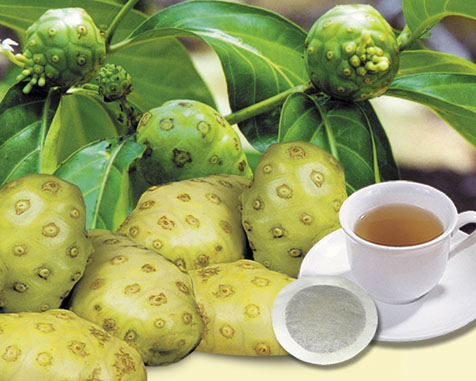 "Hot product for health DRIED NONI FRUIT - Whatsaap : + 84979171029 Email "": julia.vilaconic(AT)gmail.com"