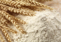 WHEAT FLOUR FOR SALE