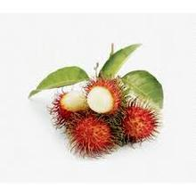 RAMBUTAN FREEZE DRIED NO SUGAR