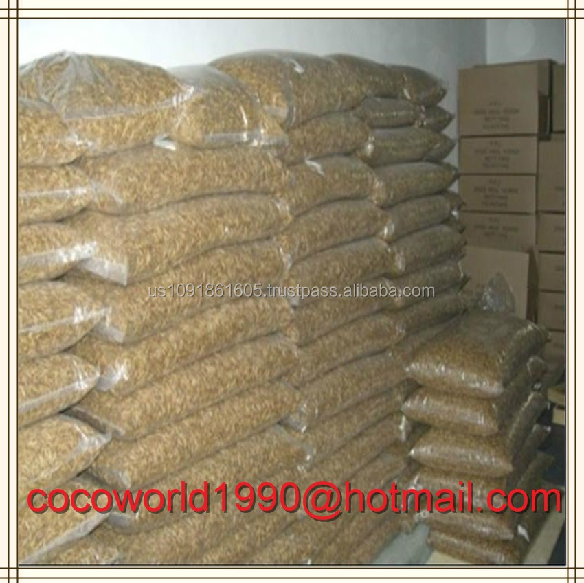 mealworms in food/mealworms for human consumption/live mealworms for sale