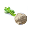 High Quality Non-GMO Organic Pea Protein Wholesale