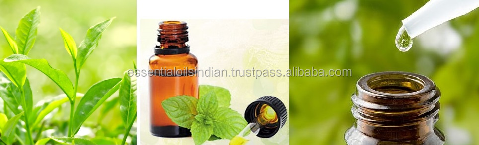 pure Tea Tree Oil of India