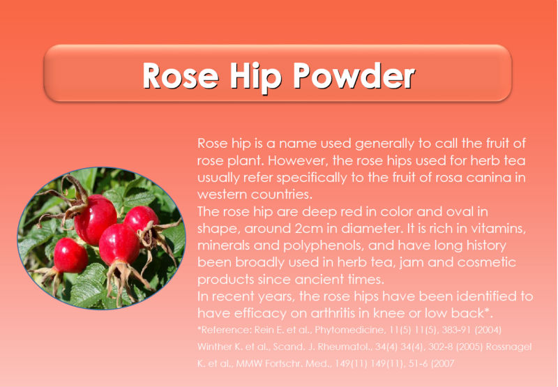 Japanese High Quality Rose Hip Extract Raw Material Powder Made In Japan As Antioxudant For Health Foods And Dietary Supplement