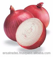 Big Red Onion For Malaysia Market | Big Red Onion for Dubai Market | Big Red Onion Price for Hong Kong Market