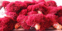 iranian top quality all red saffron