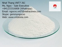 Heavy calcium carbonate powder made in Vietnam for Plastic Processing