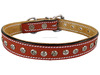 New Design Dog collars dog leashes pet accessories grooming products