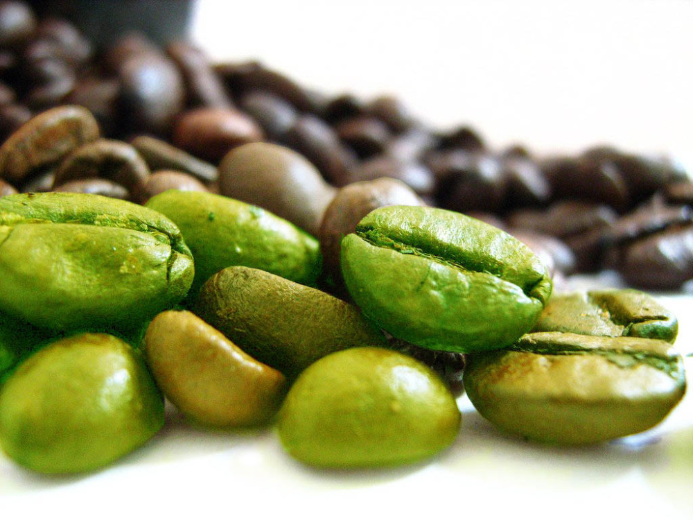 Natural & High Quality Green Coffee Nean extract 50% Chlorogenic Acid