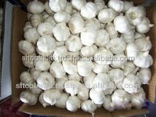 Indian Garlic and Dehydrated Garlic