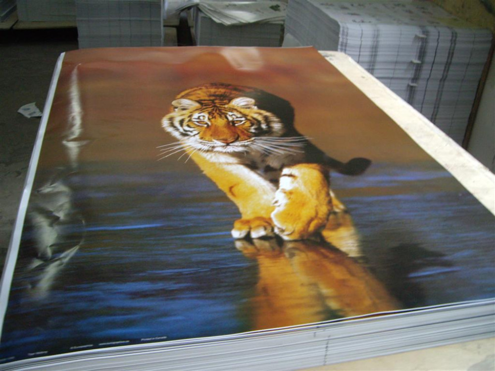 Cheap factory price pp custom 3d poster printing