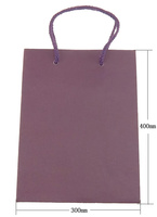 300x400x100mm purple Kraft Shopping Bag