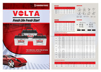 VOLTA LM Automotive Battery