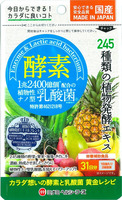 MINAMI FOODS Enzyme Nano Lactic Acid Bacteria 62 Capsule Made in Japan