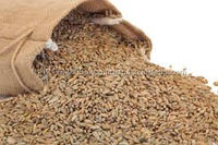 Rye, Rye Bran, Rye Flour for sale