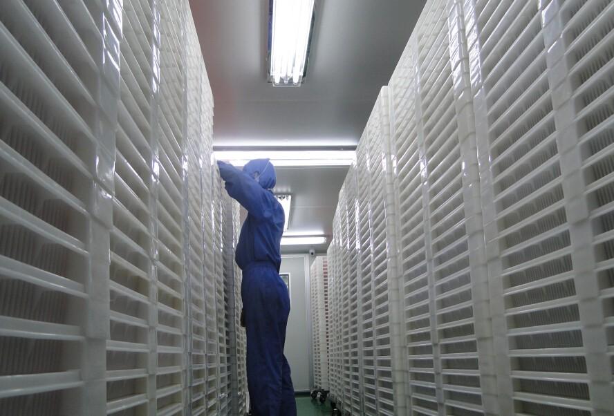 Megio Bio-Tech Workshop drying room