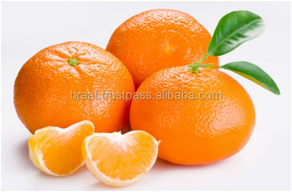 Import Oranges From Pakistan Mandarin Oranges Brands Fruit