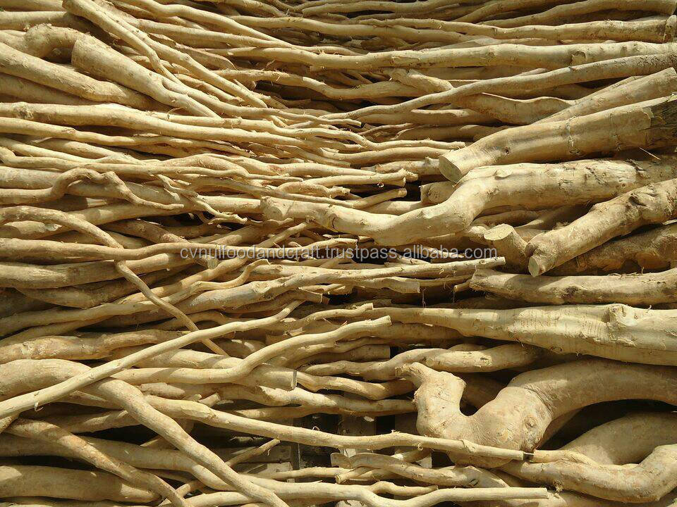 Tongkat Ali / Longjack Raw From Kalimantan, Indonesia Best Quality
