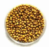 high oil content rapeseeds/canola seeds with high quality and best price