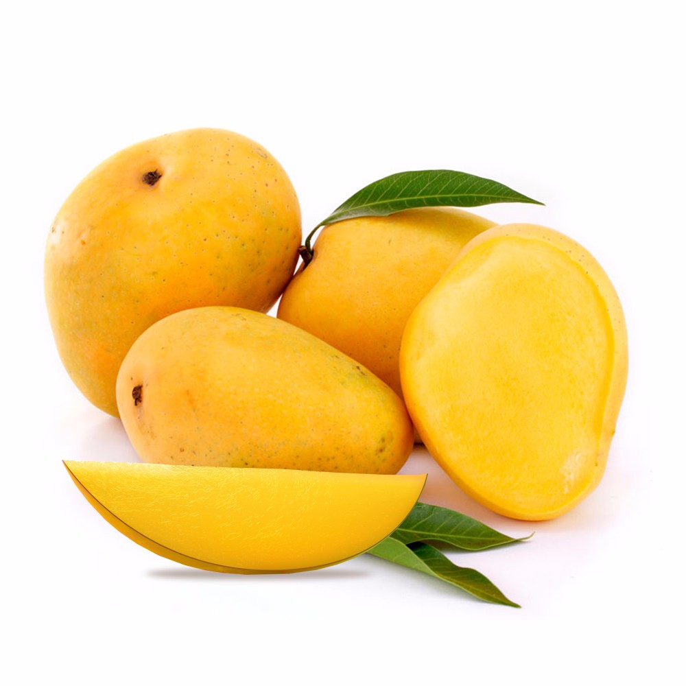 Fresh Mango Exporter In India