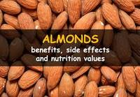 BITTER CALIFORNIA ALMOND NUTS / ALMOND KENNELS