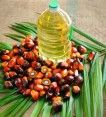 Buy Palm Kennel Cooking Oil