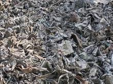 Metal Scrap shredded steel Tin cans 1000 MT available metal scrap prices
