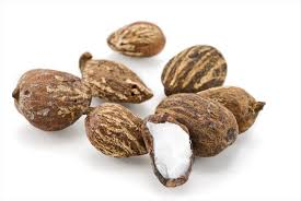 Shea Nuts from Thailand