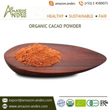 Pure Cacao Beans Powder Available for Wholesale Buyers