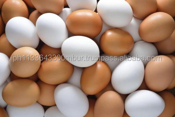Farm Fresh Chicken Table Brown and White Eggs !! Top Grade..