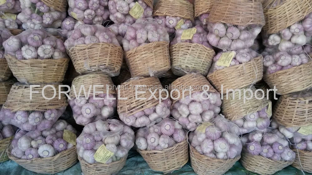 High Quality Best Price 100% Natural Fresh Super White Garlic