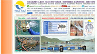 LIVE LOBSTER WHOLE FROZEN LOBSTER -TIDA KIM EXPORTER-COOKED FROZEN LOBSTER TAILS USA VIETNAM ASIA HONGKONG CHINA 500 700 900 GR