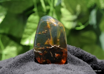 Dominican Green Amber Stone