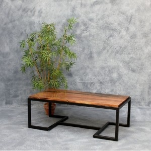 Alexa Center Table with Acacia Top