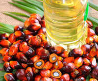 Palm Oil - Refined and Crude Palm Oil Supplier