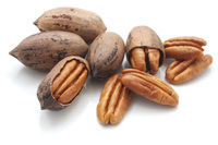 Pecan - Visit www.agriprices.com For Wholesale Price Discounts On Raw Pecan Nuts