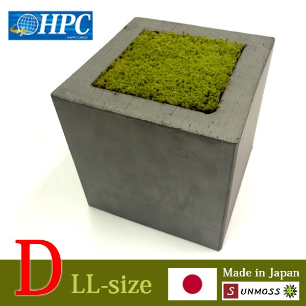 Living and Durable Popular Moss at reasonable prices Maintenance free,in Roofing tile size:LL