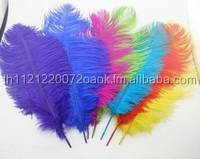 Bulk Ostrich Feathers Cheap Ostrich Feathers 15cm to 75cm Fancy Colorful Wholesale Ostrich Feathers