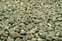 Arabica GREEN coffe beans and slim deliciously coffee or arabica green coffee beans