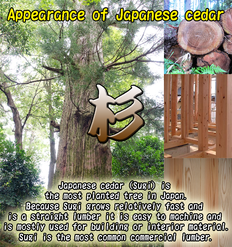Colorful and Stylish non-combustible color wood with flame-retardant treatment with resistance to fire made in Japan