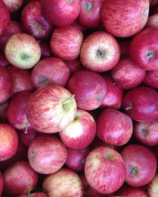 Apples, Fuji, Gala, Royal Gala, Delicious, Green, crisp red, pink lady, Granny smith, pear, fruits, oranges, citrus, vegetables