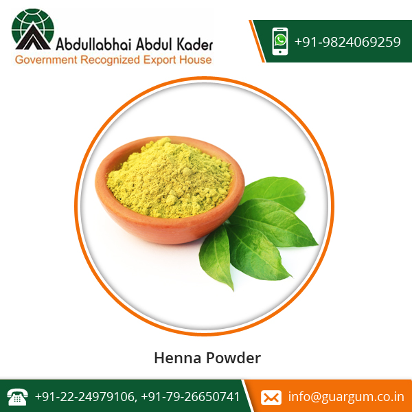 Premium Supplier of Henna Powder for Dye Skin, Hair at Best Price