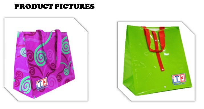 PP WOVEN/ NON WOVEN/ RPET SHOPPING BAGS from ASIA