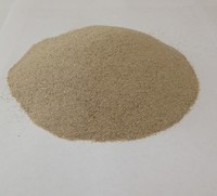 50- 55 AFS /100 - 500 Micron Dry Silicia Sand