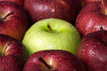 cheap farm fresh vegetables and fruits fuji apples wholesale fruit prices with high quality